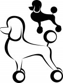 Poodle dog Poodle purebred dog with Continental clip standing in side view vector silhouette isolated