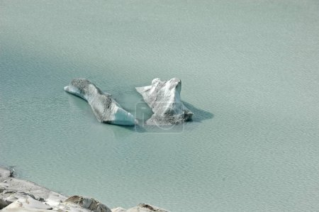 Icebergs in a Glacial Lake