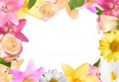 Abstract Frame with Lily Rose and Other Flowers Natural Backgr