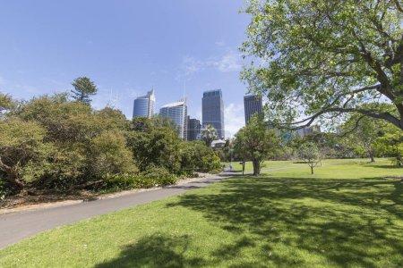 Photo for Sydney Botanical Garden, travel - Royalty Free Image
