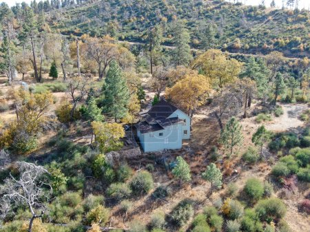 high, small, grass, rural, tree, mount - B320801440