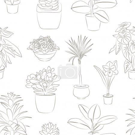 Houseplants set pattern