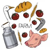 Original hand drawn farm collection