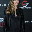 Постер, плакат: Actress Denise Richards