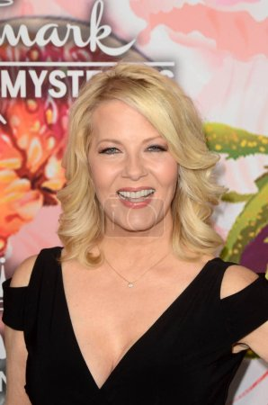 Photo for Barbara Niven at the Hallmark Channel and Hallmark Movies and Mysteries Winter 2018 TCA Event, Tournament House, Pasadena, CA 01-13-18 - Royalty Free Image