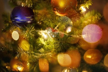 Photo for Blurred image of Christmas fir tree with festive lights and cute bird, selective focus - Royalty Free Image
