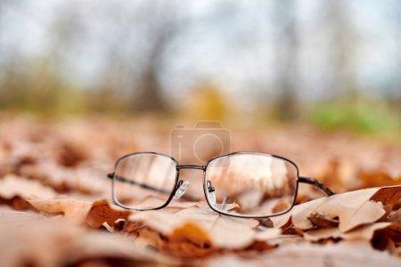 Glasses on autumn foliage. Autumn vision loss conc...