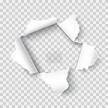 Torn paper realistic vector illustration
