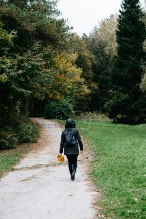Photo pour Jeune femme qui marche dans le parc automne - image libre de droit