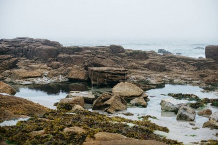 Coastline landscape with big stones in fog