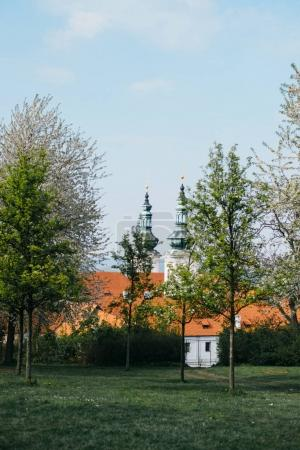 Beautiful view from the Petrin Garden in springtime