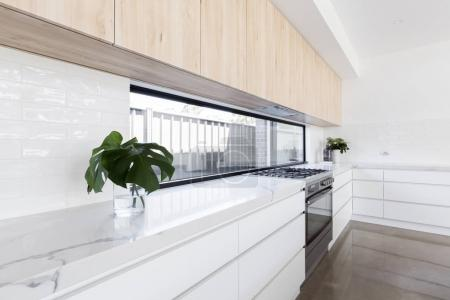 Modern luxury kitchen