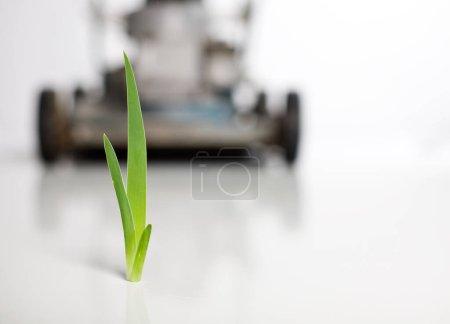Un concept de confrontation avec un brin d'herbe face à une tondeuse .
