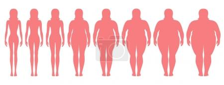 Illustration for Vector illustration  of woman silhouettes with different  weight from anorexia to extremely obese. Body mass index, weight loss concept. - Royalty Free Image