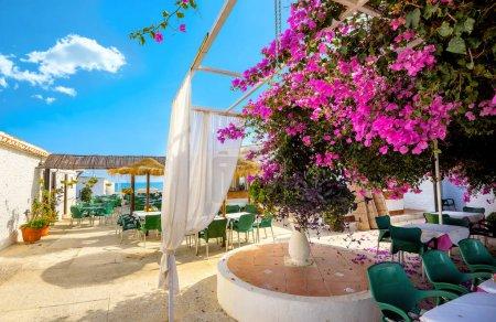 Courtyard of coastal cafe in Torremolinos