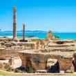 Panoramic view of ancient Carthage. Tunis, Tunisia...