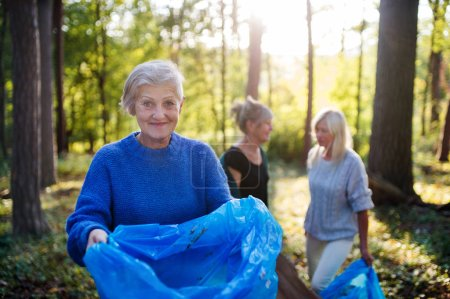 Photo for Group of senior women friends picking up litter outdoors in forest, a plogging concept. - Royalty Free Image