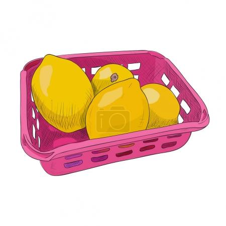 Illustration for Vector color sketch of plastic container with lemons. Food box with lemons. Hand draw illustration. - Royalty Free Image