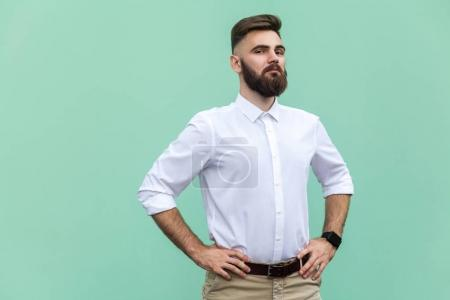 The arrogant bearded man. Businessman looking at camera. Indoor, studio shot, light green background