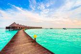 Beautiful tropical Maldives island