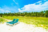 Beautiful tropical beach and sea in maldives island with coconut palm tree and blue sky backgroun