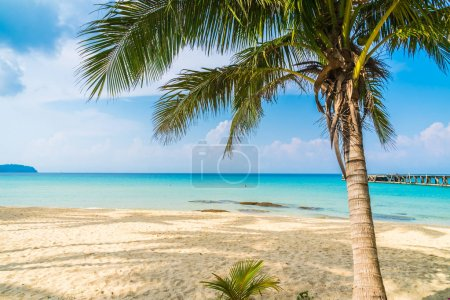 Photo for Beautiful tropical beach and sea with coconut palm tree in paradise island - Holiday Vacation concept - Royalty Free Image