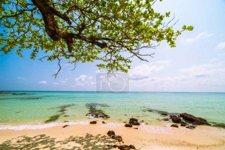 Beautiful paradise tropical beach and sea