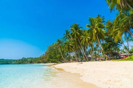 Foto de Hermosa playa tropical y el mar con el árbol de Palma de coco en Isla Paraíso - concepto de vacaciones - Imagen libre de derechos