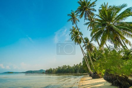 Photo for Beautiful paradise island with beach and sea around coconut palm tree at sunset time - Holiday Vacation concept - Royalty Free Image