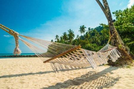 Hammock on beautiful tropical beach with tropical coconut palm trees and sea