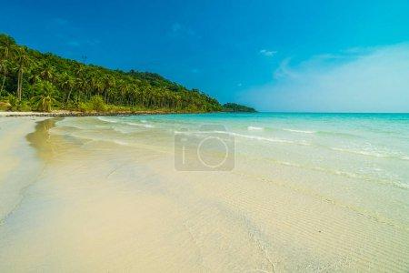 Foto de Hermosa naturaleza tropical playa y mar con el árbol de Palma de coco en la isla paraíso para viajan vacaciones - Imagen libre de derechos
