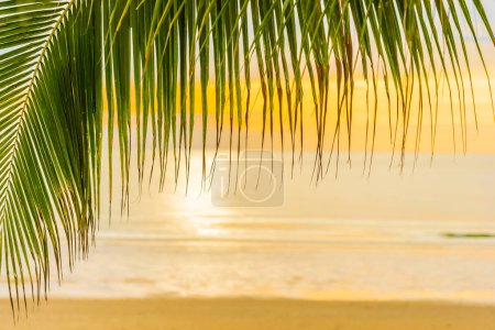Photo for Beautiful sea ocean beach with palm tree at sunrise time for holiday vacation - Royalty Free Image