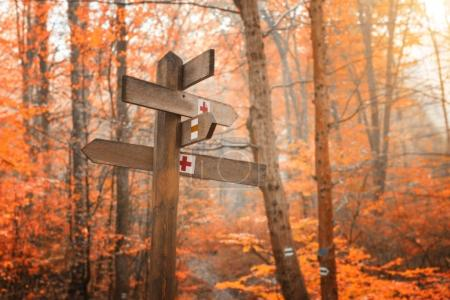 A tourist sign, a hiking trail in the autumn forest