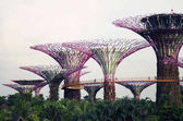 Singapore. Gardens by the Bay