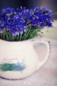 Cornflowers in the vase