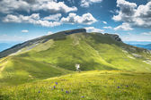 """Постер, картина, фотообои """"Пиренейские горы пейзаж - Anisclo Каньон в летнее время. Уэска,"""""""