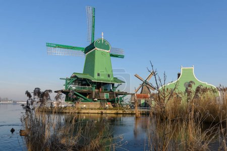 The wind mills in Zaan Schans
