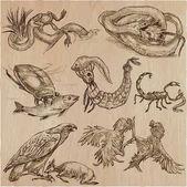 Animals in action Predators - An hand drawn vector illustration