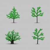 Set of vector trees black silhouettes with leaves