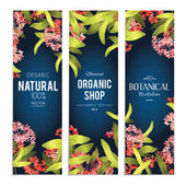 Set of Plants and herbs banners  Elements for design or invitation card
