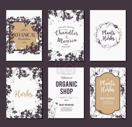 Illustration pour Ensemble de bannières Plantes et herbes. Éléments pour carte de conception ou d'invitation - image libre de droit