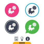 Volleyball fireball sign icons Beach sport symbol Report document information sign and light bulb icons Vector
