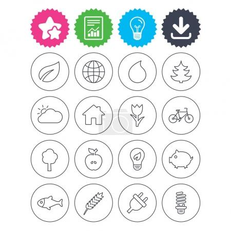 Nature and Eco icons