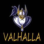 Scandinavian god Odin illustration vector Sport Te...