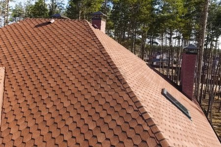 Bituminous tile for a roof. House with a roof from a bituminous