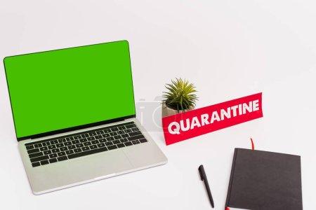 Photo pour Ordinateur portable avec écran vert près du stylo, ordinateur portable, plante et papier avec lettrage de quarantaine sur blanc - image libre de droit