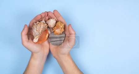 Photo for Seashells in men's hands on a blue background. Layout for the banner. The summer theme. - Royalty Free Image