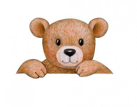 Cute bear behind by blank isolated on white background