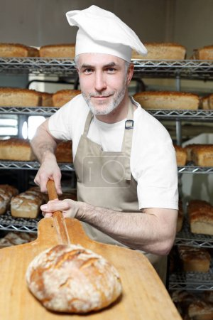 Photo for Loaf of bread with golden crust.The baker in the bakery takes out the fresh bread from the oven - Royalty Free Image