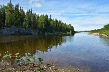 Summer landscape of the river Shchugor in the Northern Urals.